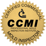 Mold remediation for commercial buildings and spaces